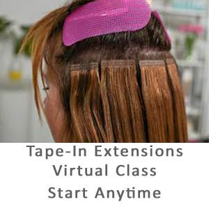 Product image for Babe Tape-in Extension Virtual Course